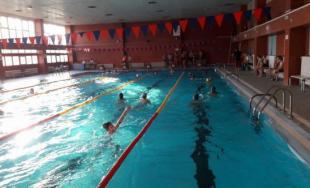 Plavecká štafeta miest v Prešove