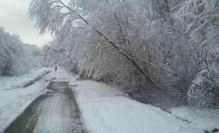Víkendové sneženie na východe Slovenska