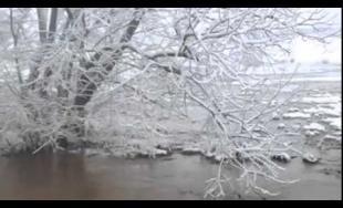 VIDEO: Sekčov sa pri Finticiach vylial z Koryta